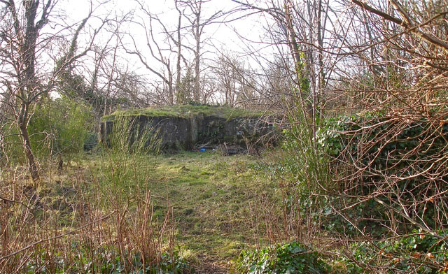 Cathcart Castle demolished